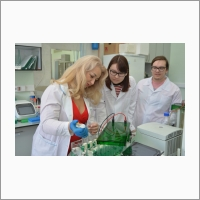 Ученые за работой (лаборатория исследования модификации биополимеров ИХБФМ СО РАН)