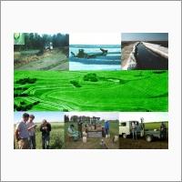 Основные направления НИР Алтайского НИИСХ в области земледелия