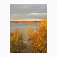 Берег Обского моря осенью. Фото С.В. Алексеенко.