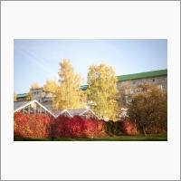 ЦКП «Лаборатория искусственного выращивания растений»  - гидропонный тепличный комплекс Института, предназначенный для выращивания всех видов растений в условиях искусственного климата