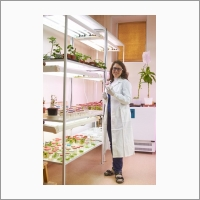 Developing transgenic plants to advance science and research