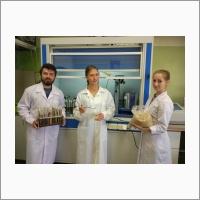 Механохимическая переработка растительного сырья в ИХТТМ СО РАН