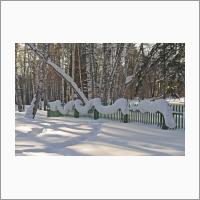 Снежная зима. Фото С.В. Алексеенко.