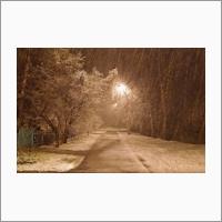 Зима в конце мая, Академгородок, 2018. Фото С.В. Алексеенко.