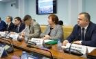 Директор НИОХ СО РАН Елена Багрянская на совещании в Совете Федерации