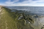 Загрязненный берег Байкала. Автор фото — Владимир Короткоручко, пресс-центр ИНЦ СО РАН