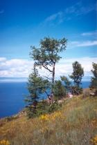 Берег Байкала. Фото Ирины Орловой