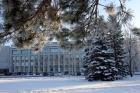 Институт экономики и организации промышленного производства СО РАН, Новоосибирск