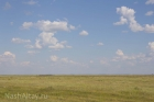Кулундинская степь. Фото nashaltay.ru