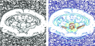 Образец-медицинского-изображения-с-применением-цветового-кодирования