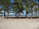 Озеро Горькое, Алтайский край