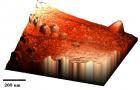 Трехмерное изображение осажденных на пирротине частиц платины, сделанное атомно-силовым микроскопом.