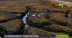 Тазовский район Ямало-Ненецкого автономного округа
