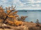 Прибайкальский нацпарк. Фото А. Таничева