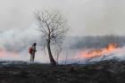 Пожары в Томской области