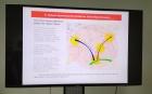 Зоны развития Академгородка 2.0. Фото 4s-info.ru (ЧС Инфо)